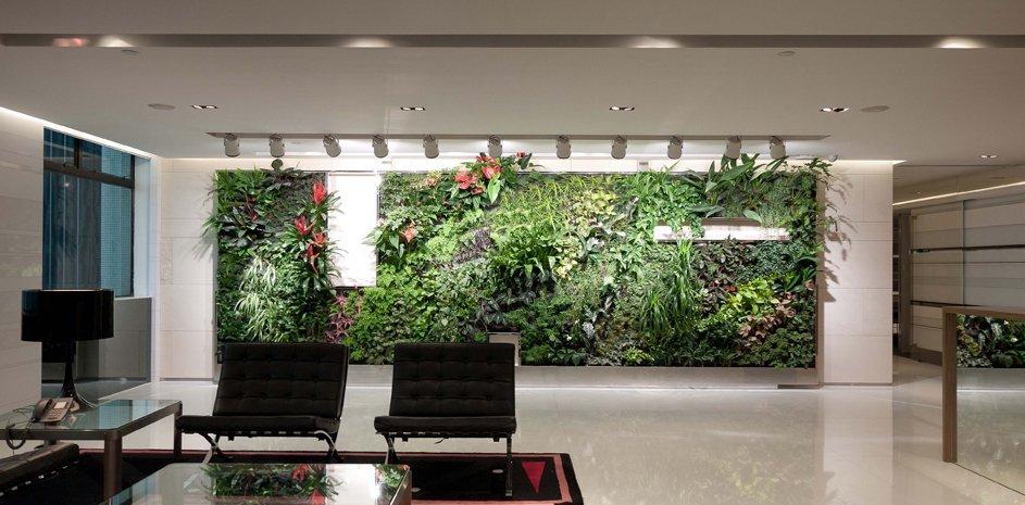 Turning your office green in Twenty Eighteen !